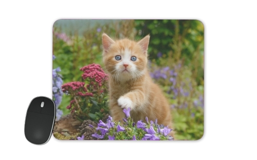 Cute ginger kitten in a flowery garden, lovely and enchanting cat para alfombrillas raton
