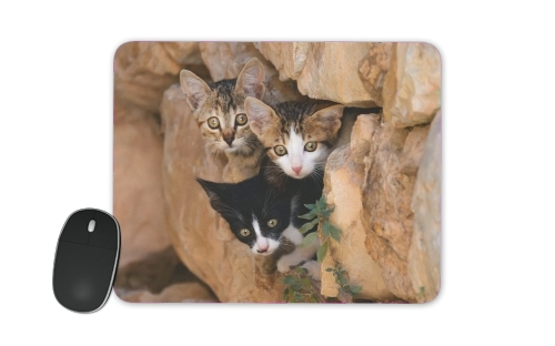 Three cute kittens in a wall hole para alfombrillas raton