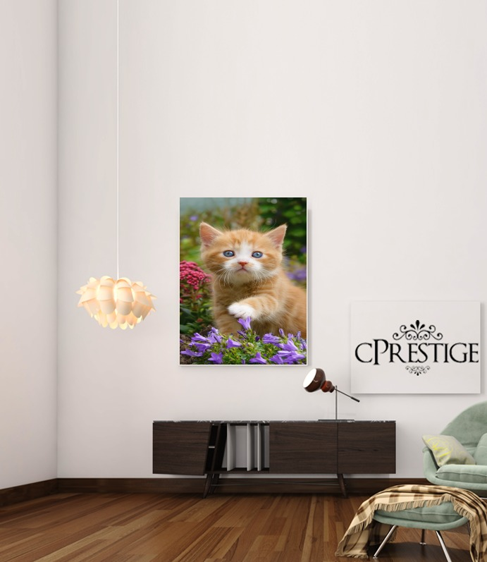 Cute ginger kitten in a flowery garden, lovely and enchanting cat para Poster adhesivas 30 * 40 cm
