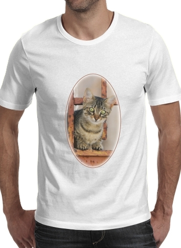 Cute kitten on a rusty iron door  para Camisetas hombre