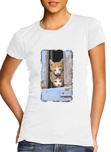 Cute curious kittens in an old window para Camiseta Mujer