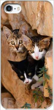 Three cute kittens in a wall hole Carcasa para Iphone 7 / Iphone 8