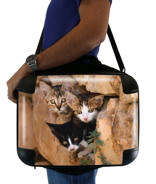 Three cute kittens in a wall hole para bolso de la computadora