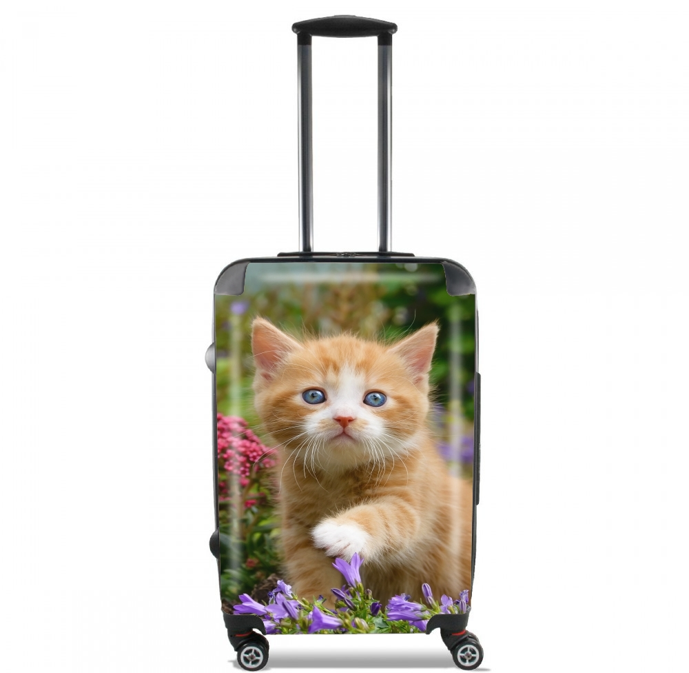 Cute ginger kitten in a flowery garden, lovely and enchanting cat para Tamaño de cabina maleta